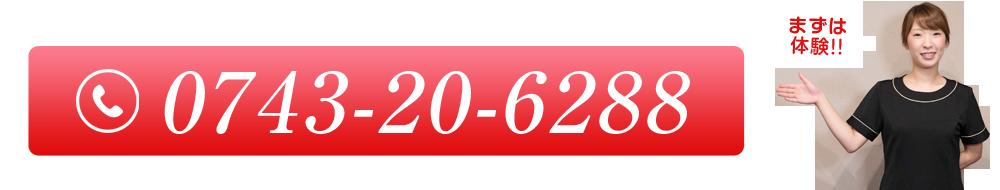 0743206288